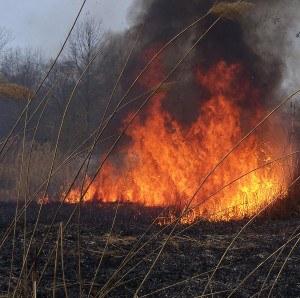 Bastrop wildfire burning