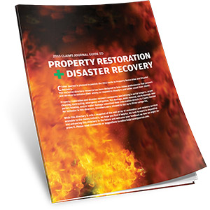 2013 Disaster Recovery Guide