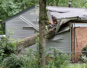 Oak Tree Crushing a House