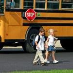 School bus sign law