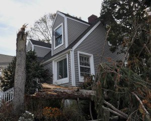 Fairfield Beach, Conn., Nov. 5, 2012 -- This home did not sustain major damage considering the number of trees which were toppled by Hurricane Sandy. Trees are severely hampering the efforts to return power to homes and FEMA is working with the utilities helping to fund the cleanup process. Photo by Marilee Caliendo/FEMA
