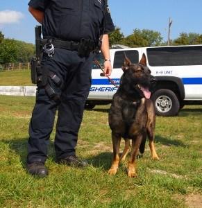 K-9 Police Dog