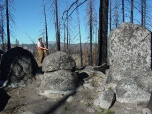Mark Cochrane, senior scientist at the Geospatial Sciences Center of Excellence, surveys damage from the Antelope Complex Fire in Plumas National Forest in northern California. Sparked by lightning, the 2007 fires were fueled by an abundance of dead trees and brush on the forest floor.