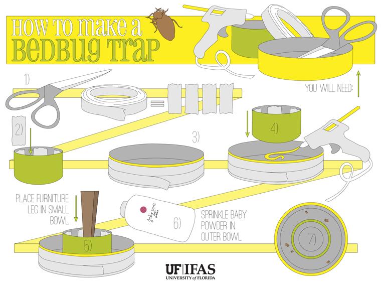 bedbug trap diagram: University of Florida