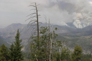 El Portal Fire. Smoke column rising from a bowl on the north end of the fire south of Crane Flat.  Photo: http://inciweb.nwcg.gov