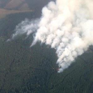 36 Pit Fire. Photo: inciweb.org