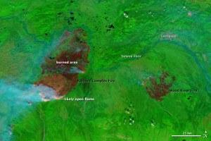 Railbelt Complex fire in Alaska. NASA image courtesy the MODIS Rapid Response Team.