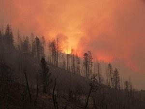 Rough Fire. Photo: InciWeb.org
