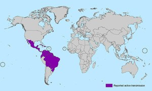 All Countries and Territories with Active Zika Virus Transmission. Photo: CDC