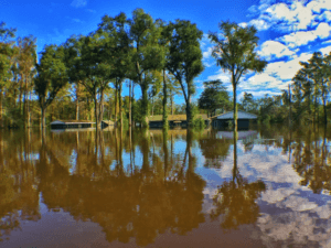 Nichols, SC, USA--Floodwater surrounds homes in Nichols, South Carolina following Hurricane Matthew. FEMA Photo by Dominick Del Vecchio - Oct 12, 2016
