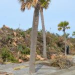 Mounds of debris in Jayee Park on Tybee Island, GA. Photo by Gary Petty - Oct 26, 2016