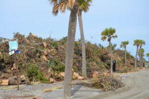 Mounds of debris in Jayee Park on Tybee Island, GA. Photo by Gary Petty - Oct 26, 2016